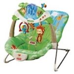 infant bouncy seat rental houston