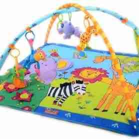 Rent an Infant Activity Mat