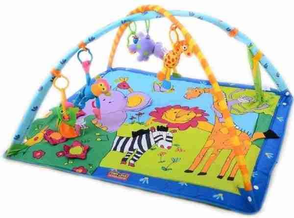 Rent an Infant Activity Mat