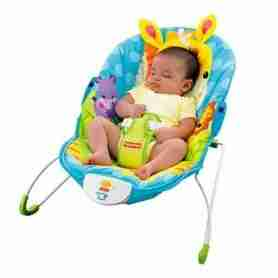 Rent a Bouncy Seat