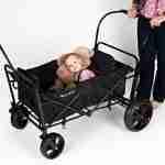 Rent a Stroller Wagon